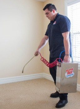 operator cleaning carpet